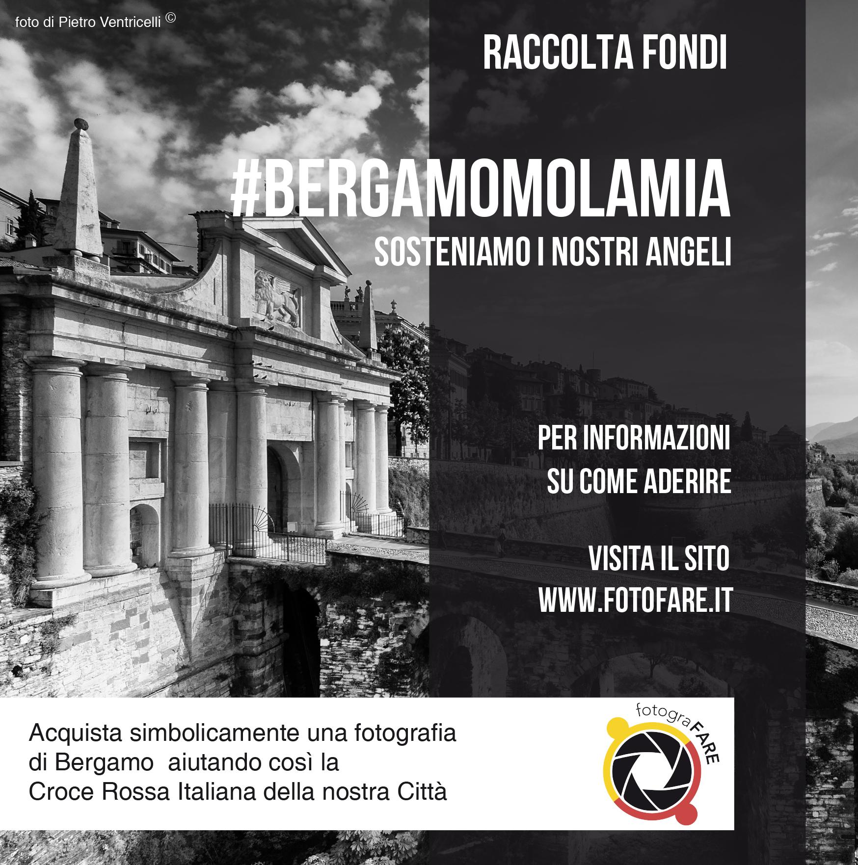 #bergamomolamia – paypal